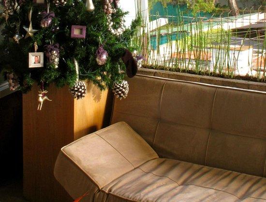 Piedraluna Hotel : The perfect nook to plan your Guatemala City adventure, on the terrace of Piedraluna.