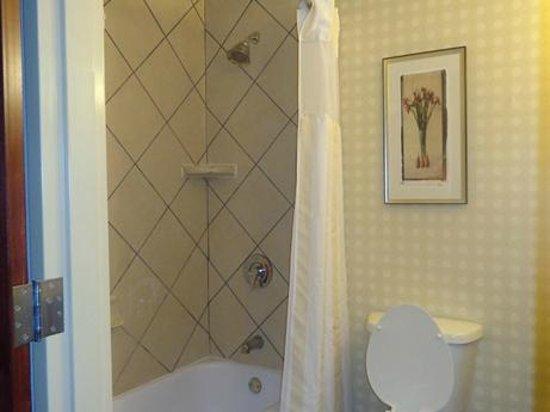 Hilton Garden Inn Starkville: bath...nice tiled shower