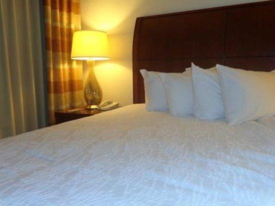 Hilton Garden Inn Starkville: bed