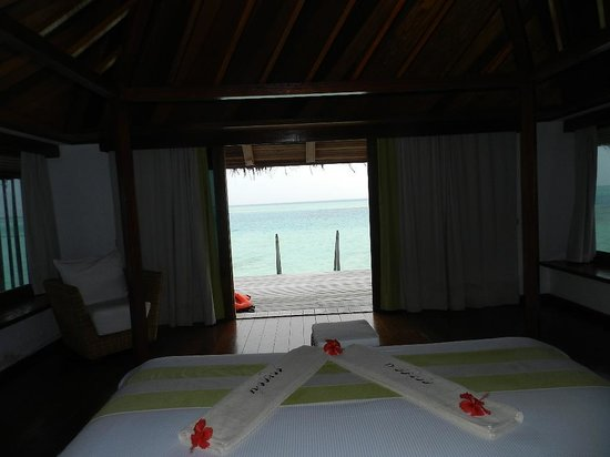 Gangehi Island Resort: view from bed