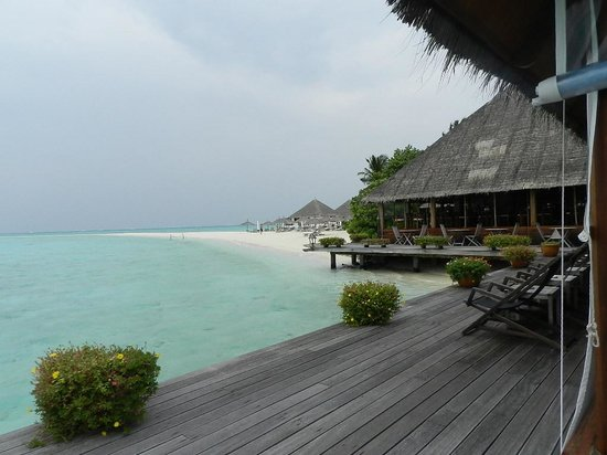 Gangehi Island Resort: a view of the beach from the bar