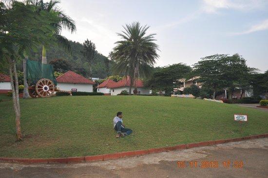 Veerabhoomi Tourist Village Kushalanagar: Green lawns.