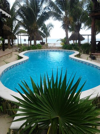 Holbox Dream Beach Front Hotel by Xperience Hotels: Piscina frente al mar.