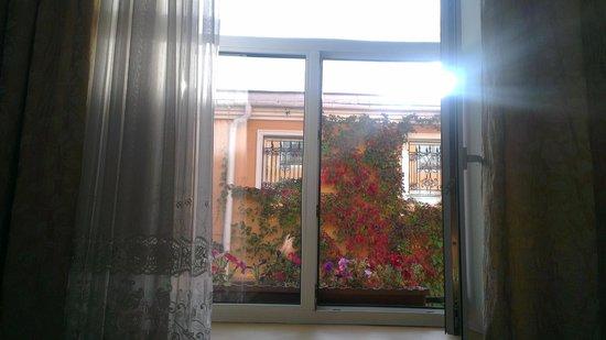 Menshikov Hotel: Цветочки на окне