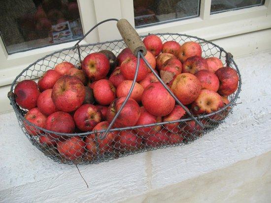 Clos de mondetour : autumn apples in a basket, Aude's decor flair!