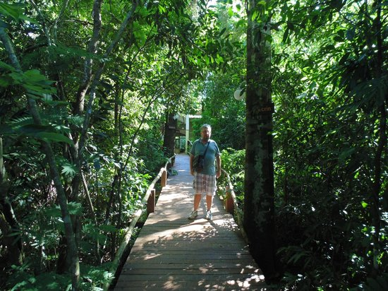 """Palo Rosa Lodge: The path to our """"cabin"""""""