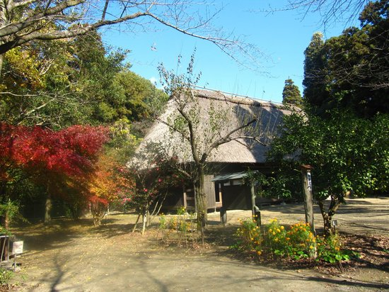 Miyazaki Prefectural Museum of Nature and History: One of the preserved buildings.