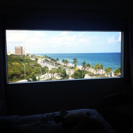 Sonesta Fort Lauderdale Beach : The view from our room