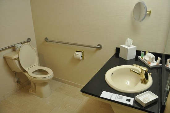 Monte Carlo Resort & Casino : Handicapped Bathroom