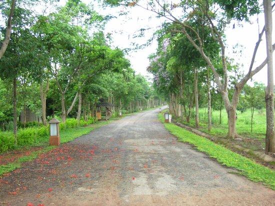 Mohn Mye Horm: entrance