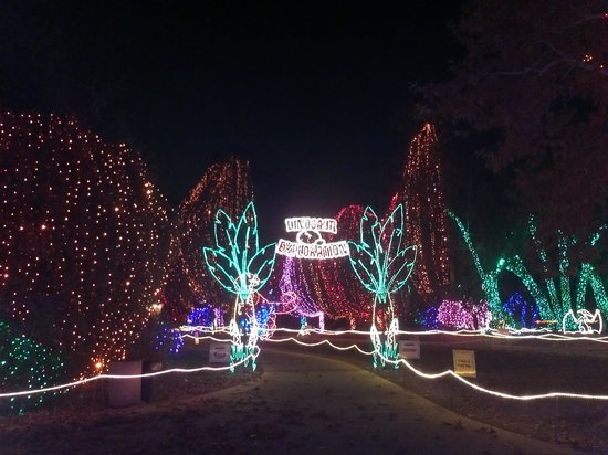 California Area Living Museum (CALM): Lights, music and fun!