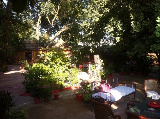 Mandore Guest House - a leafy resort.: Mandore Guest House