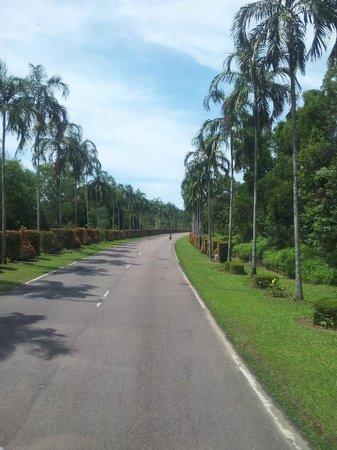 Angsana Bintan: otw to the resort