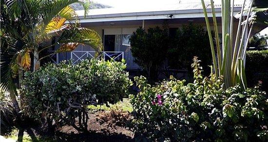 Pension de la Plage Tahiti : Verdure