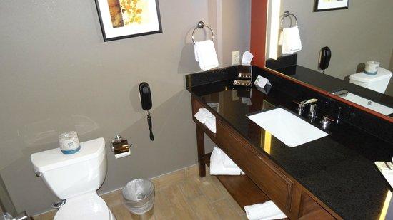 Best Western Premier Ivy Inn & Suites: bathroom