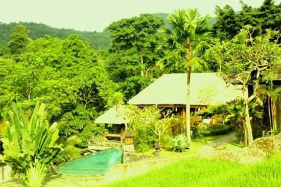 Abian Ayu Villa: view from a round the hotel