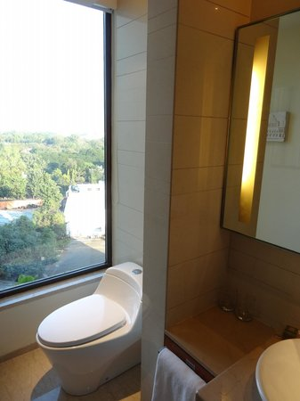 Hyatt Pune : トイレ