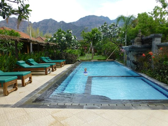 Taruna Homestay : Pool