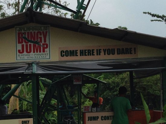 Jungle Bungy Jump : Here's where you sign up