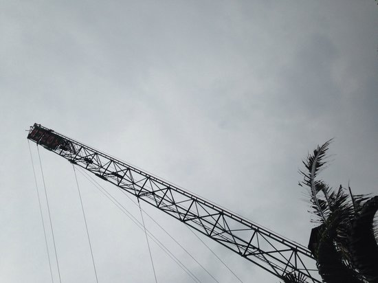 Jungle Bungy Jump: Jump off this crane