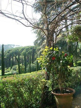 Jardin Santa Clotilde : Сады Святой Клотильды