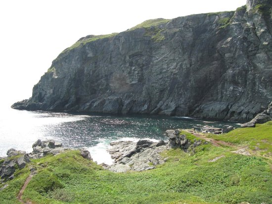 Seabreeze B & B: coast line
