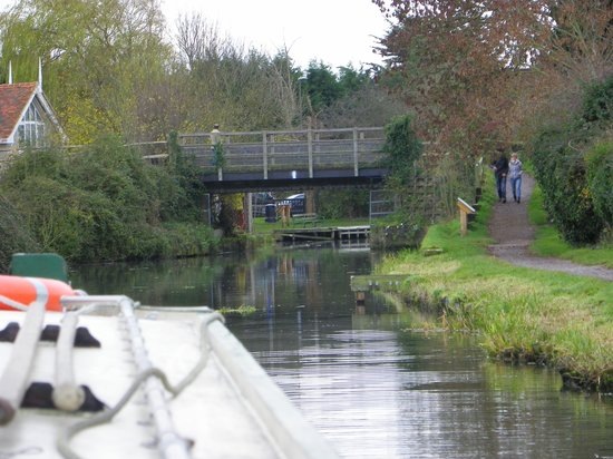Chichester Ship Canal Trust: Along the canal