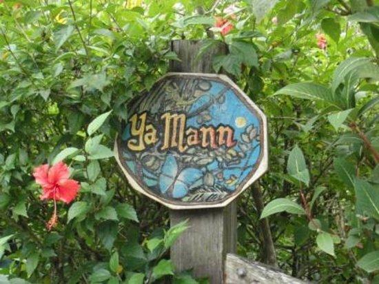 Cabinas Yamann: Garten