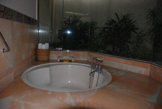 Le Meridien Jaipur Resort & Spa: Green area in the bathroom