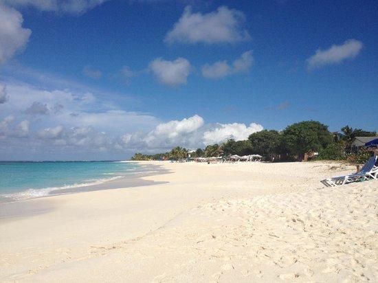 Simpson Bay (ทะเลสาบซิมป์สัน เบย์), เซนต์มาร์ติน / ซินท์มาร์เทิน: Shoal Bay. Anguilla.