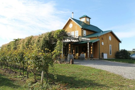 The Good Earth Food and Wine Co.: Main Building