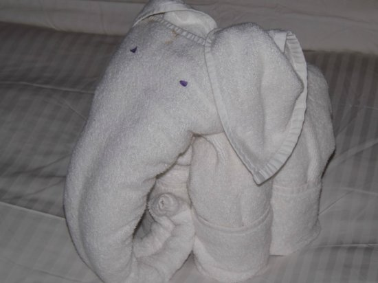 Royal Palms Beach Hotel : the room boys did this to the towels - very cute