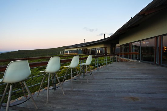 Grootbos Private Nature Reserve: Deck