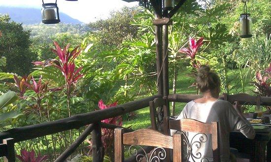 Hotel Kokoro Arenal: Breakfast area