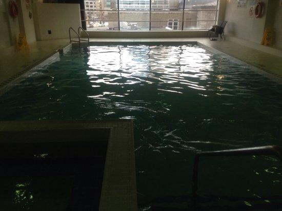 Novotel Ottawa: Pool