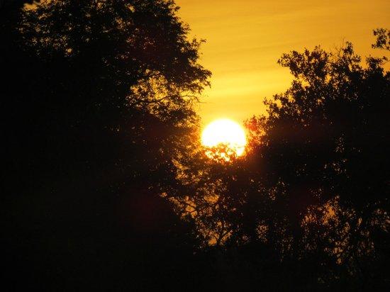 Ndololo Camp: alba