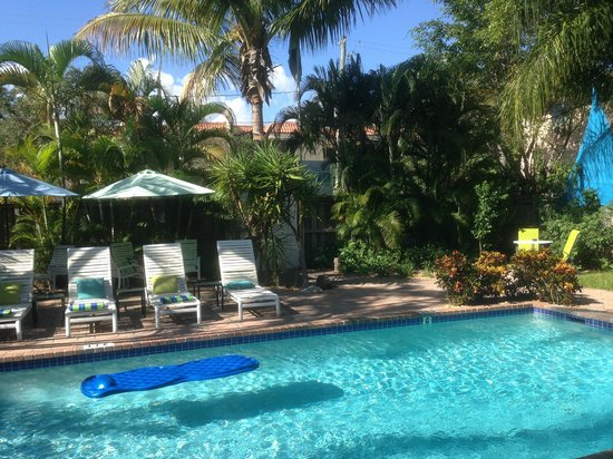 Las Olas Guesthouse @15th Avenue: Main pool area