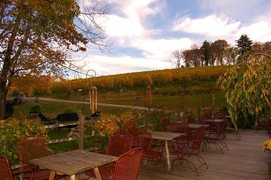 Sharpe Hill Vineyard: Hill