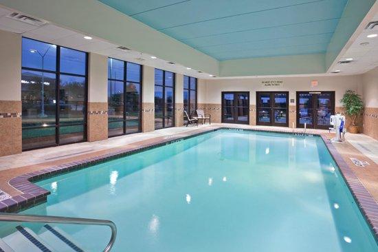 Hampton Inn and Suites - Dallas Allen: Pool