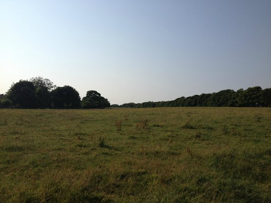 Leazes Park: Town Moor