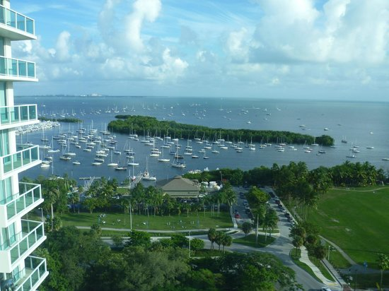 Sonesta Coconut Grove Miami : view from the room