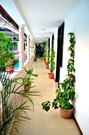 Hotel Santa Cruz: pasillo