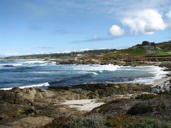 Monterey Bay: 17 Mile Dr.