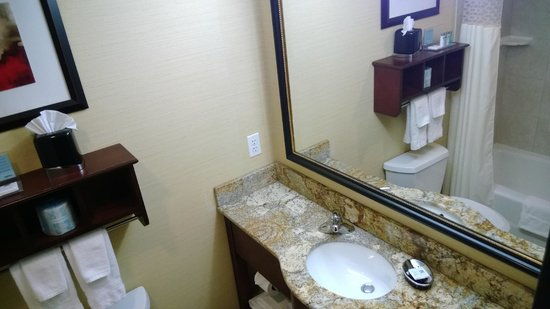Hampton Inn Manhattan-35th St/Empire State Bldg: Bagno
