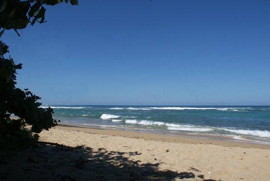 Fusion Beach Villas: Vista a la playa...
