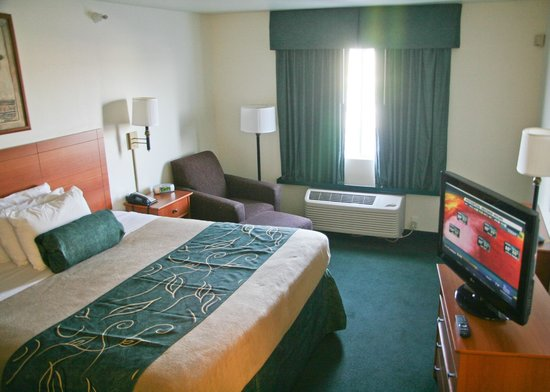 Oak Tree Inn - Fremont: Guest Room