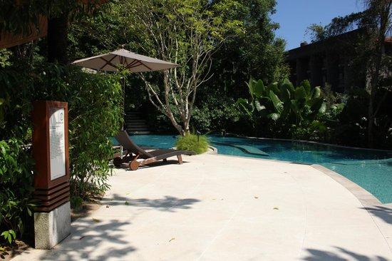 Renaissance Phuket Resort & Spa: Near spa