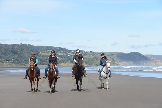 MURIWAI BEACH HORSE TREKS LTD