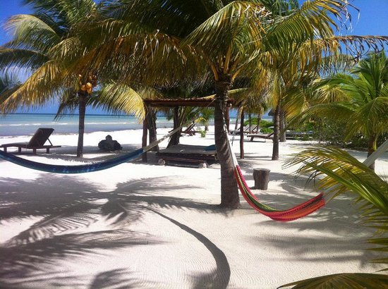 Holbox Hotel Mawimbi: Hammocks on the beach