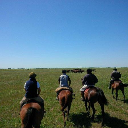 El Venado Polo School : Out with the gouchos at El Venado estate